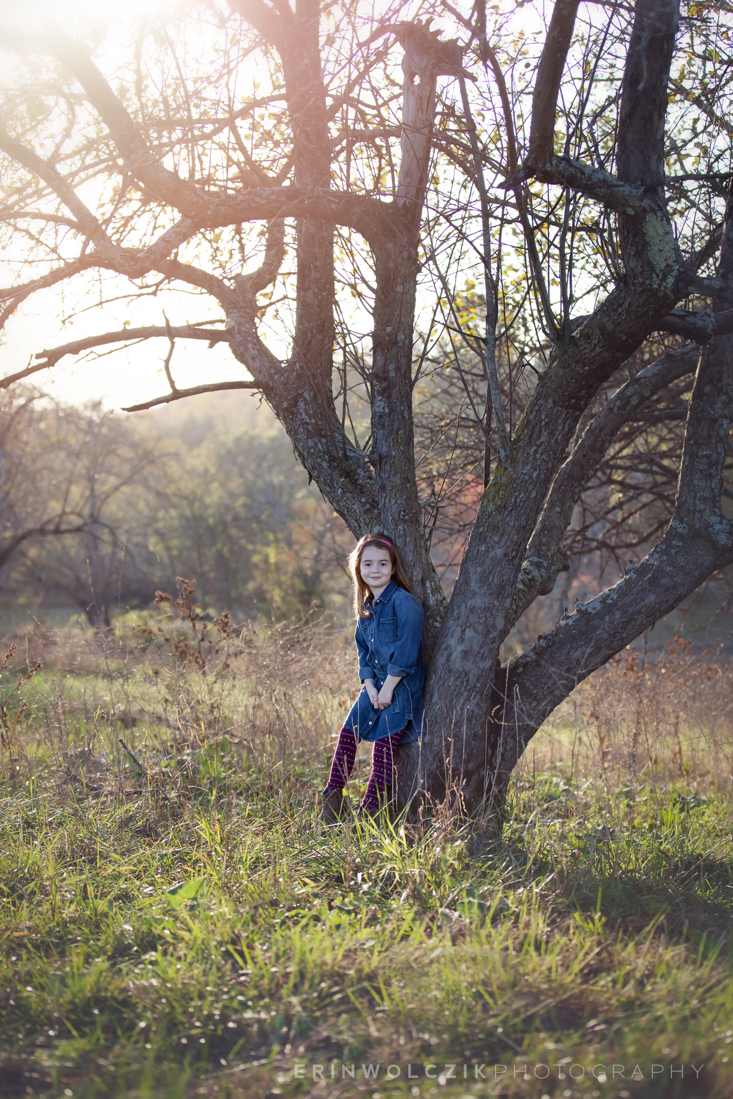 sunset in the orchard . fall child photographer . holliston, ma